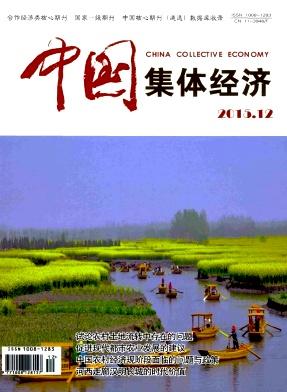 《中国集体经济》 旬刊